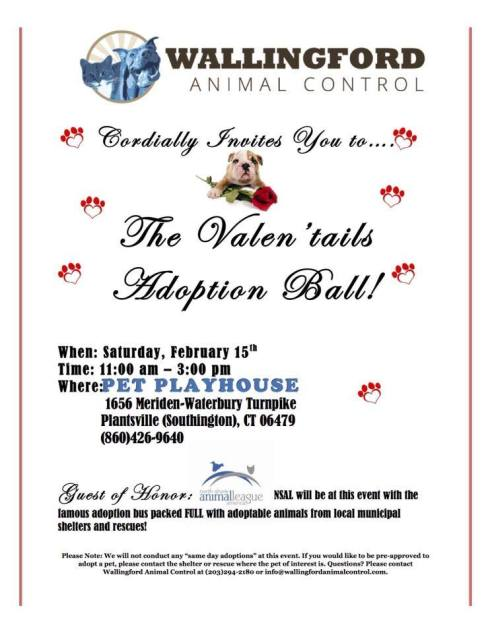 Valentails Adoption Ball